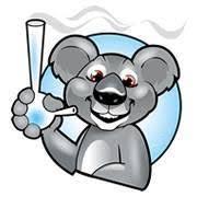 היי קלאב – המועדון והעשן (High Club)