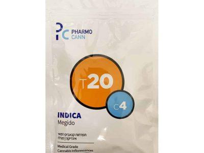 תפרחת מגידו T20/C4