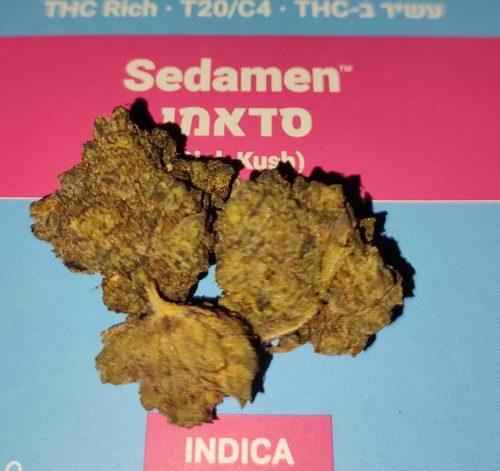 סדאמן (Sedamen) - אינדיקה T20/C4 photo review