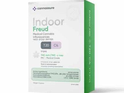 פרויד (Freud) - היבריד T20/C4