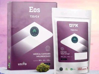 איוס (EOS) - היבריד T20/C4