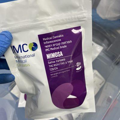 מימוזה (Mimosa) - סאטיבה T20/C4