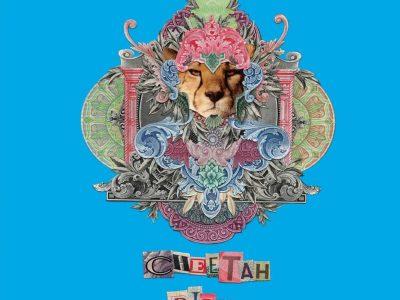 צ'יטה פיס (CHEETAH PISS) - אינדיקה T20/C4 - קוקיז