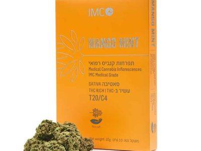 אריזת מנגו מינט (Mango Mint) - סאטיבה T20/C4