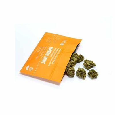 מנגו מינט (Mango Mint) - סאטיבה T20/C4