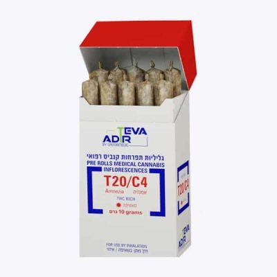גליליות אמנזיה (Amnezia) - סאטיבה T20/C4