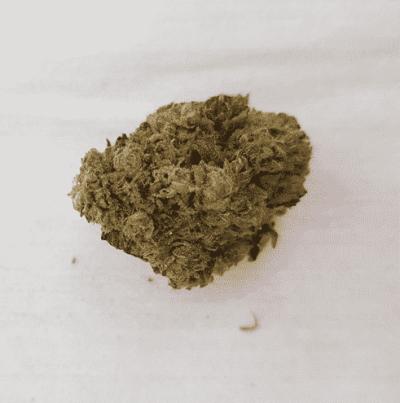תפרחת קנדי (Candy) - אינדיקה T15/C3